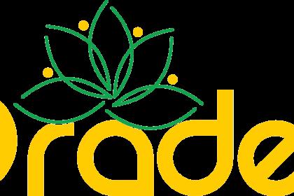 Logo Oradea